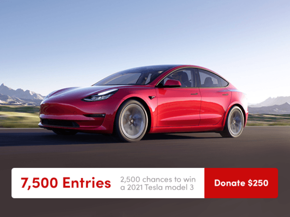 Tesla Donate $250 for 7500 Entries - Product Image