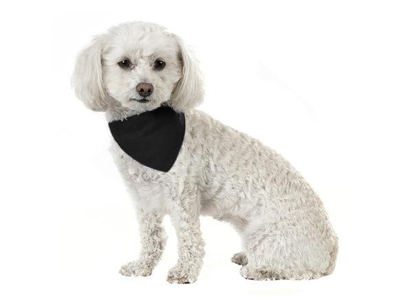 Solid Cotton 8 Pack Dog Bandana Triangle Bibs  - Small and Medium Pets - Black