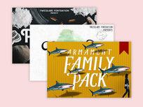 3 Premium Fonts - Product Image
