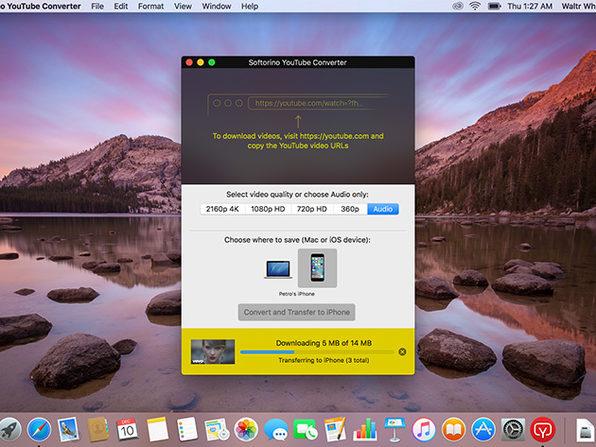 Softorino YouTube Converter for Mac   StackSocial