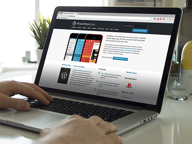 Certify Me\' WordPress Certifications | StackSocial
