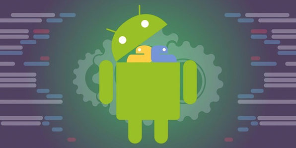 Python For Android Hacking Crash Course: Trojan Perspective - Product Image