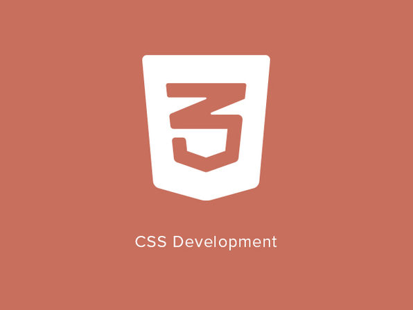CSS Development - Product Image