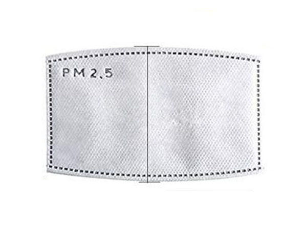 PM2.5 Activated Carbon Mask Filters (100-Pack)