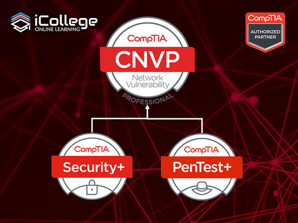 The CompTIA Network Vulnerability Assessment Professional Bundle