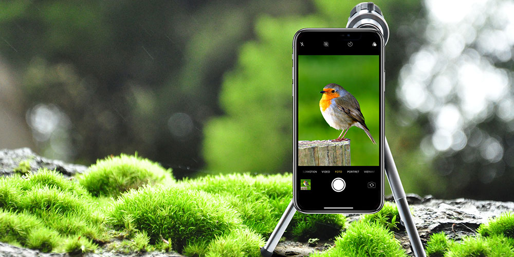 A phone using a tripod and lens, with an image of a bird