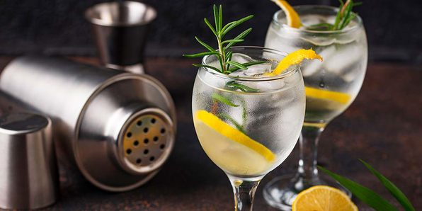 The Ultimate Gin-Cocktail Course - Product Image
