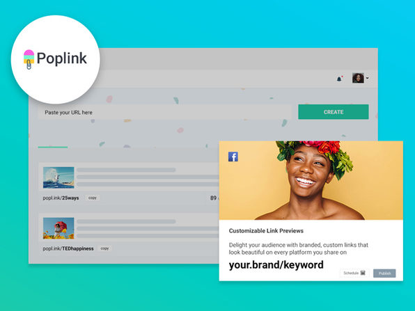 Poplink Link Shortener: Lifetime Subscription