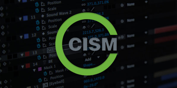 CISM: Certified Information Security Manager - Product Image