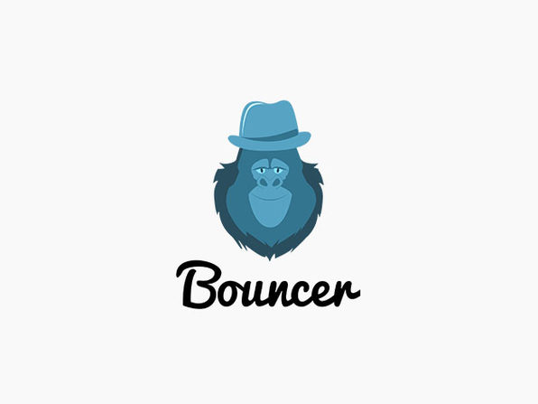 Bouncer Bulk Email Verification: Email Verifications