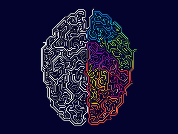 Master Your Brain: Neuroscience For Personal Development - Product Image