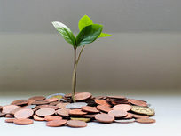 Capital Raising for Entrepreneurs - Product Image