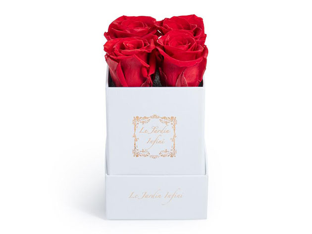 Preserved Roses in Small Square Classic White Box