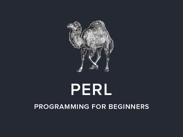 Perl Programming for Beginners - Product Image