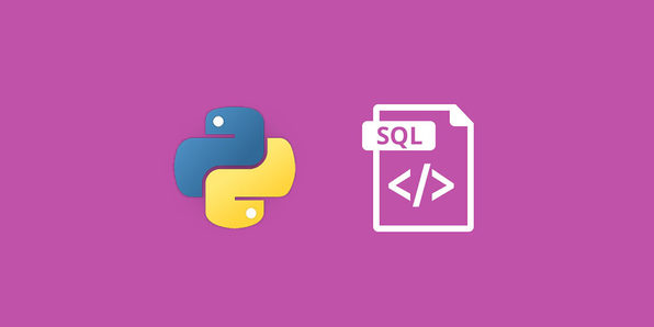 Master the Fundamentals of SQL with Python - Product Image