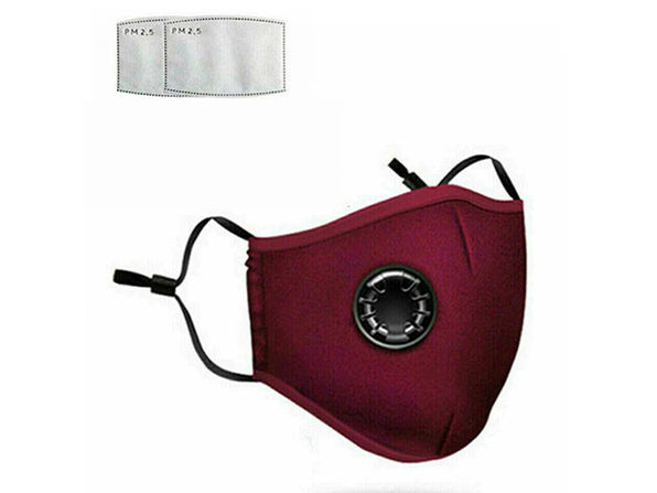 Non-Medical Cotton Masks (Red/2-Pack) + 4 Filters