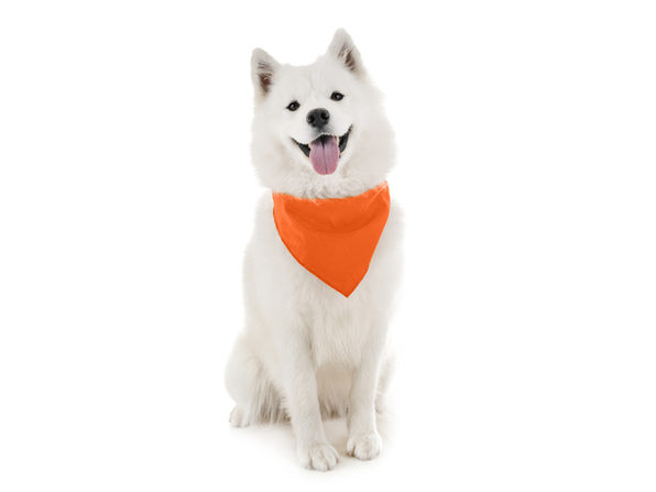 Balec Dog Solid Bandanas - 4 Pieces - Scarf Triangle Bibs for Any Small, Medium or Large Pets - Orange