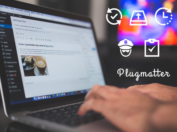 Plugmatter Professional Plan: 1-Yr Subscription