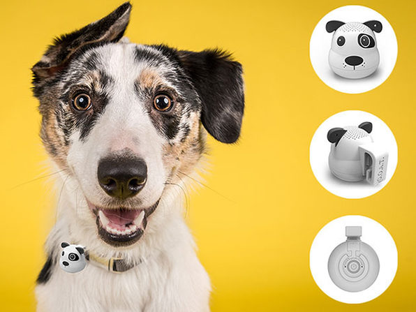 G.O.A.T. Pet Bluetooth Speaker