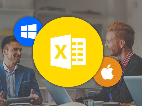 Microsoft Excel Pro Training for Mac & PC