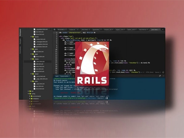 The Professional Ruby on Rails Developer
