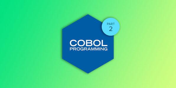 Enterprise COBOL Programming Part 2 - Product Image