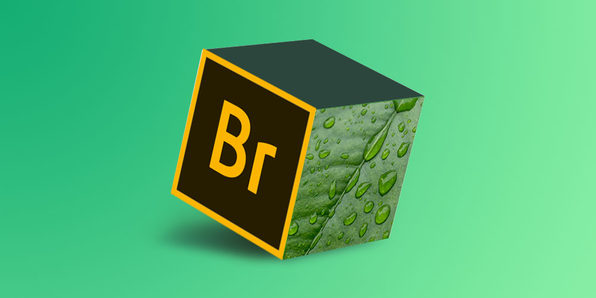 Mastering Adobe Bridge CC - Product Image