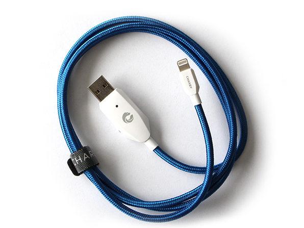 Charby Sense (Lightning/Blue)