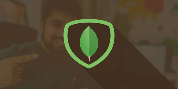 MongoDB for Beginners - Product Image