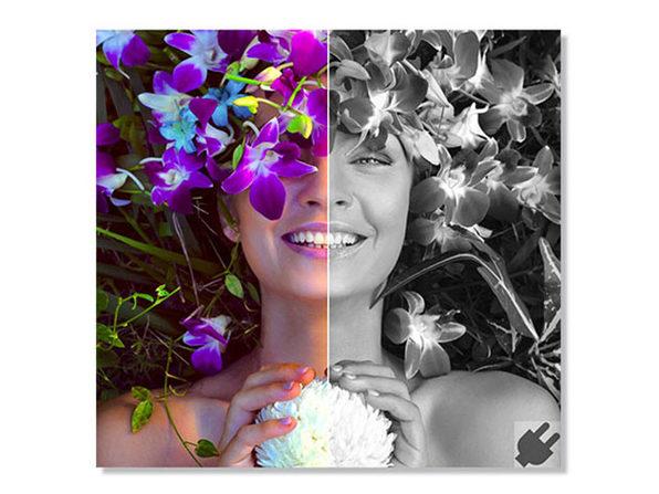 Product 15672 product shots5 image