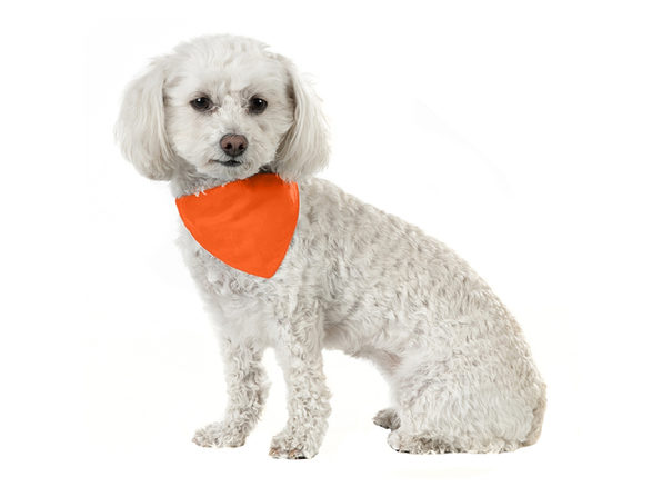 Balec 10 Pack Solid Cotton Dog Bandana Triangle Bibs  - Small & Medium Pets - Orange