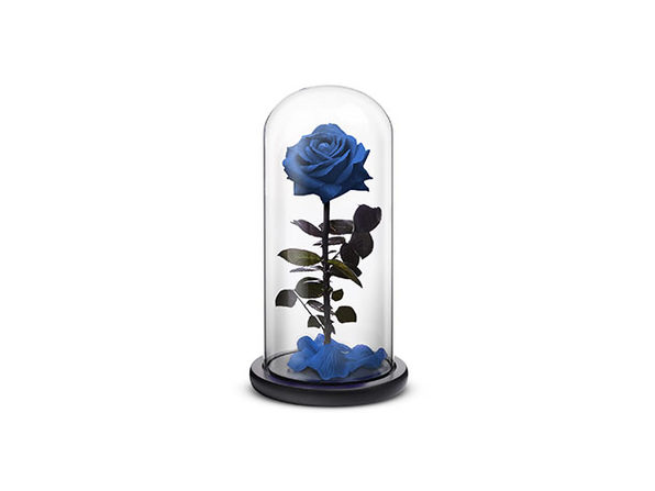 Blue Everlasting Rose