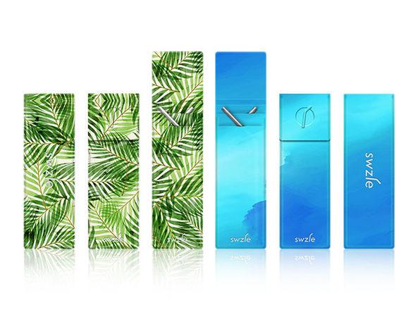 SWZLE Sustainable Straws & Case: 2-Pack (Palm Leaves, Blue Ocean)