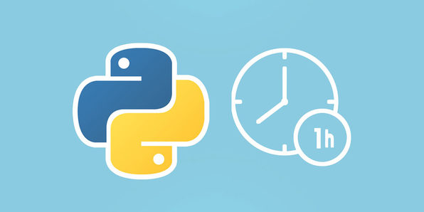 Learn Python In 1 Hour - Product Image