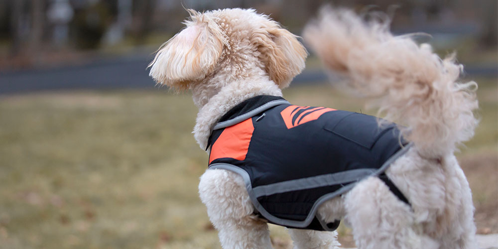 5V Rechargeable Waterproof Heated Dog Vest